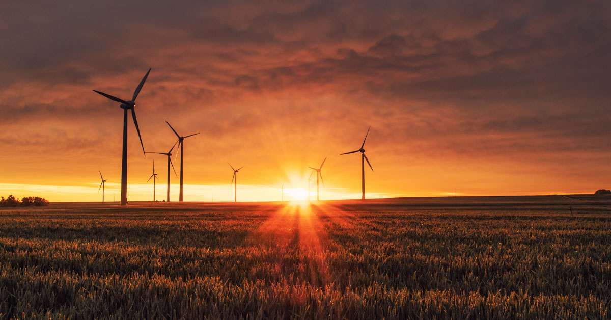 The proposed National Energy Guarantee will stunt progress