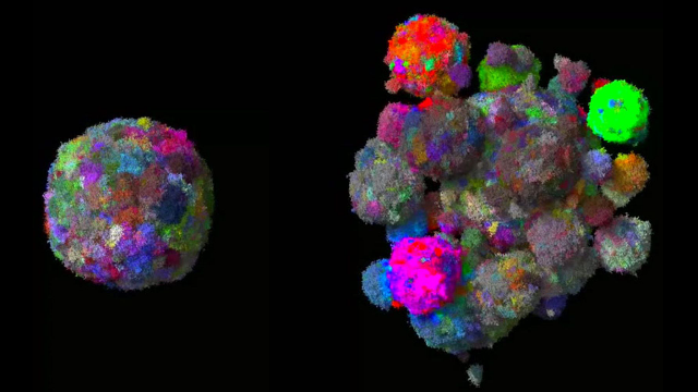 3D_tumor_evolution.png