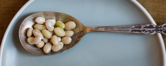 marrow beans