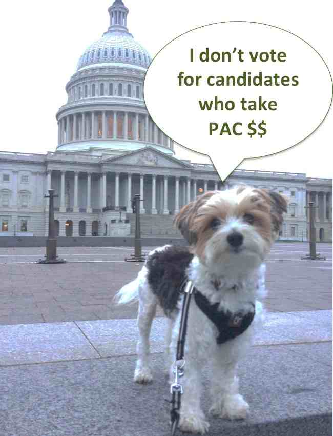 Dog_vote_for_PAC_money_sm.jpg
