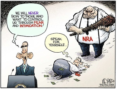 NRA_cartoon.jpg