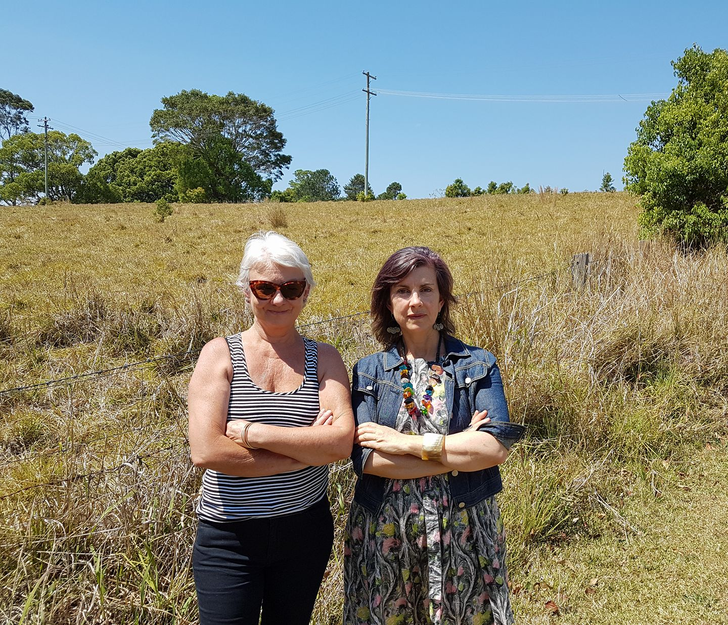 Greens raise plight of Bangalow's Koalas and mega Food Hub in State Parliament - Dawn Walker MP