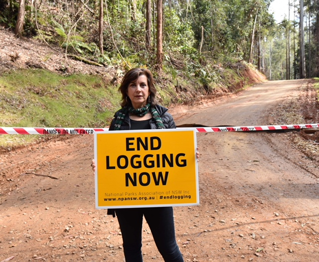 Regional Forest Agreements have failed NSW's forests: Greens - Dawn Walker MP