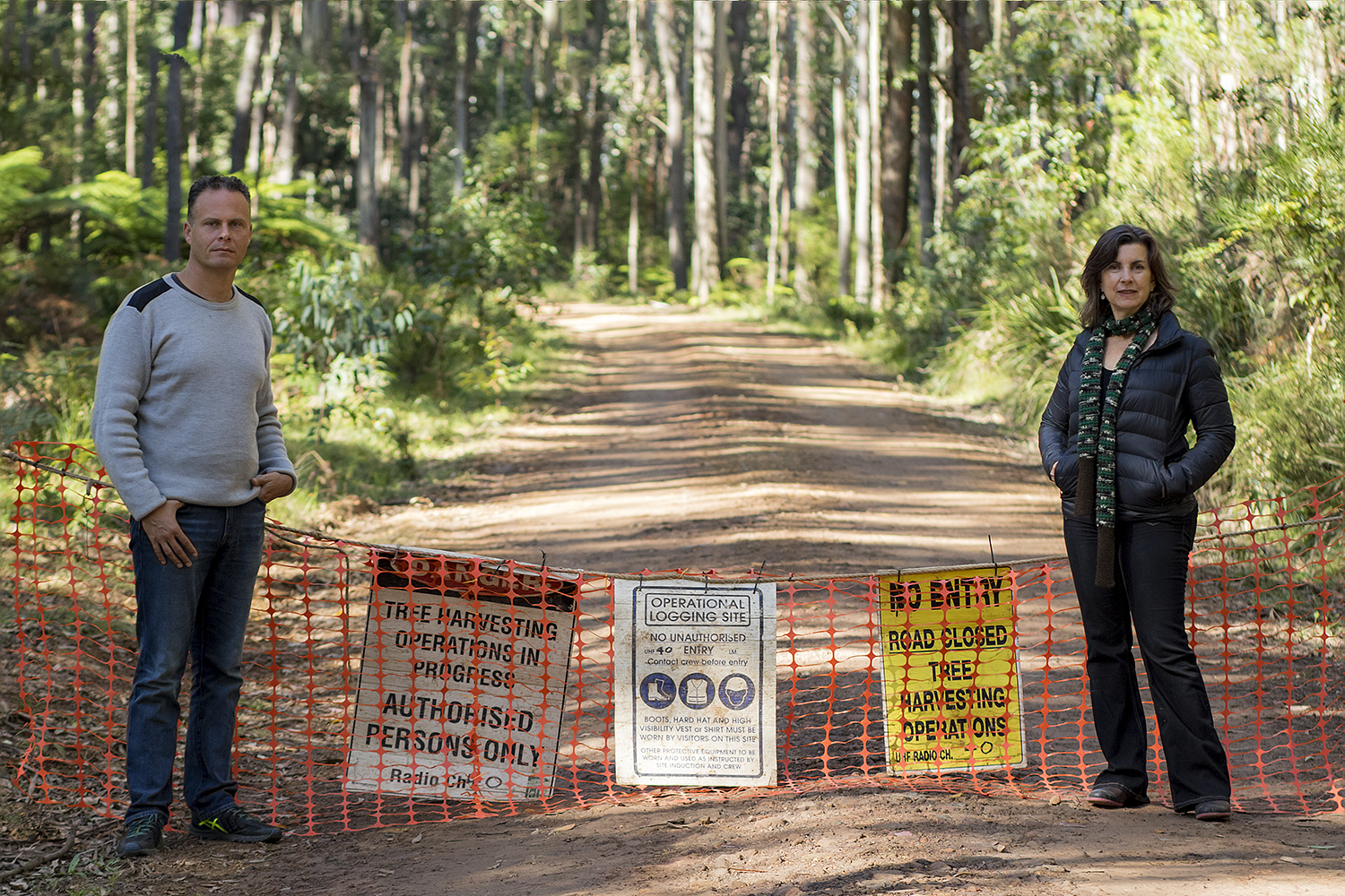 Greens seek to beef-up forestry laws - Dawn Walker MP