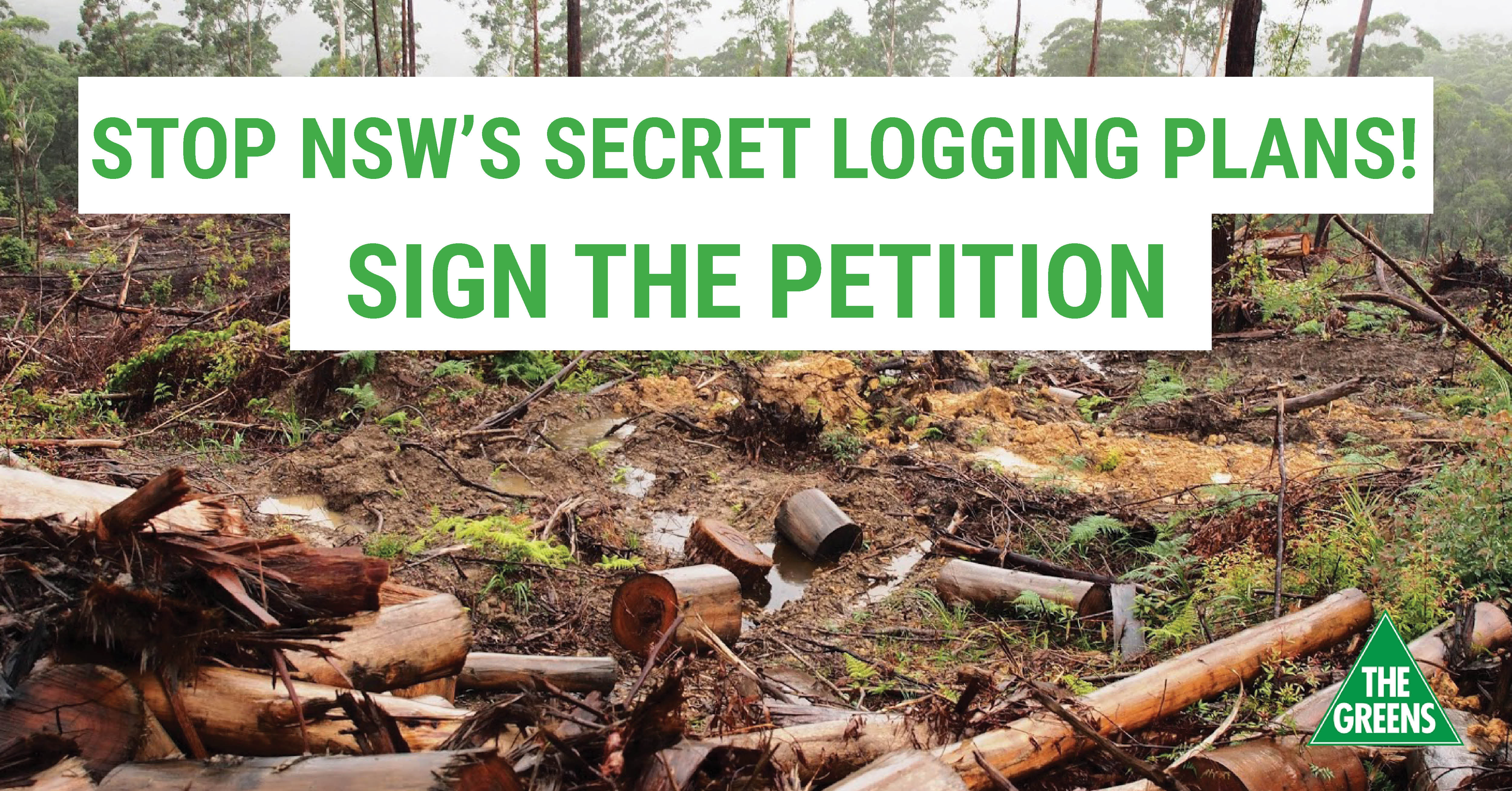 Stop NSW's Secret Logging Plans! - Dawn Walker MP