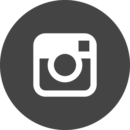 iconfinder_instagram_circle_294711.png
