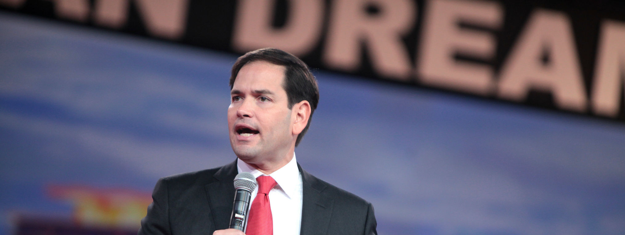 Rubio Passes Cruz and Trump in Simulated RCV Primary