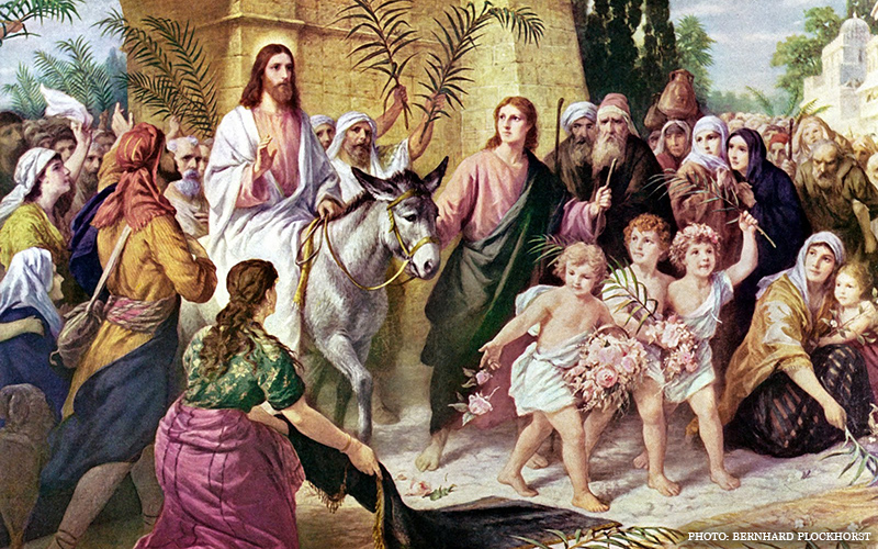 palm sunday why did crowd wave palm branches for jesus