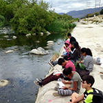 LA River Nature Walk