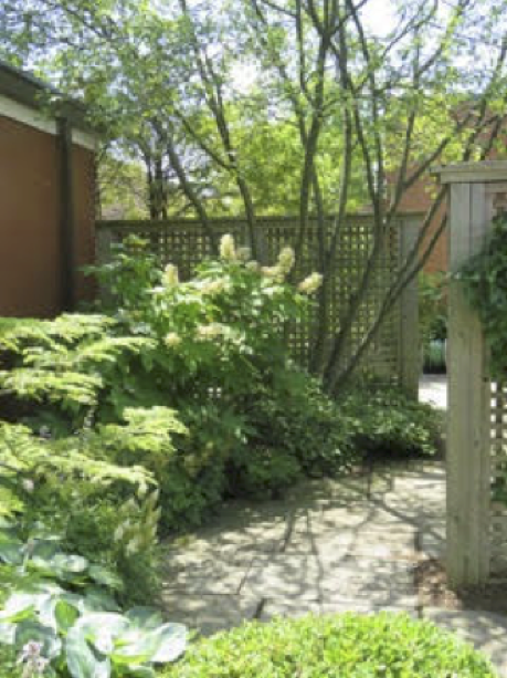 St_Lukes_Garden_Entrance.png