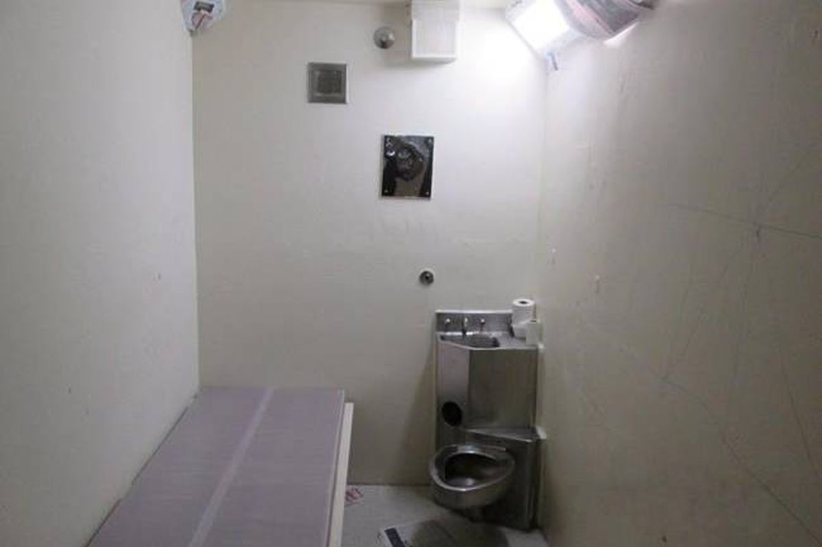 Solitary_Cell-globe_and_mail.jpg