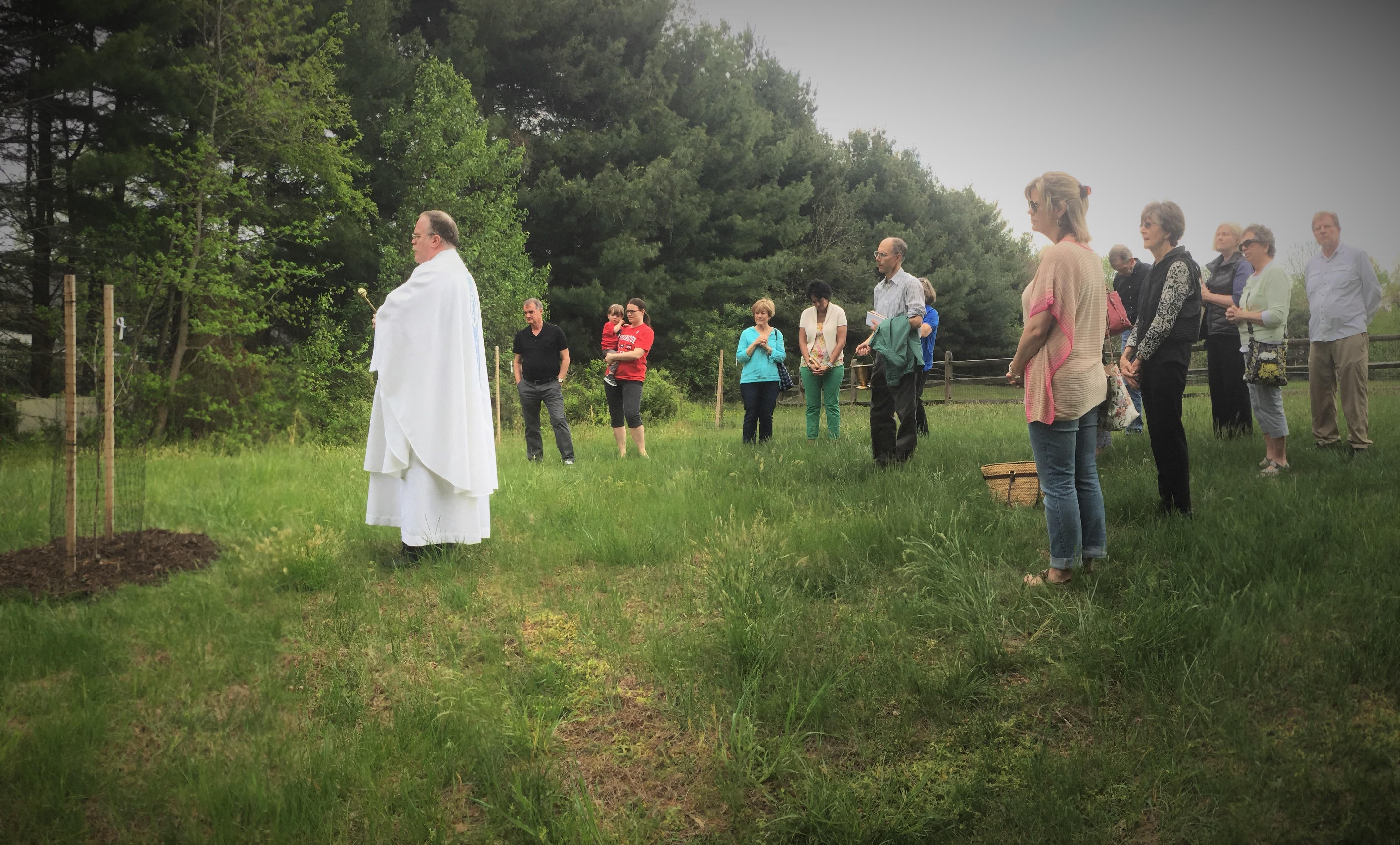 Tree_Blessing_at_Holy_Family_Catholic.JPG