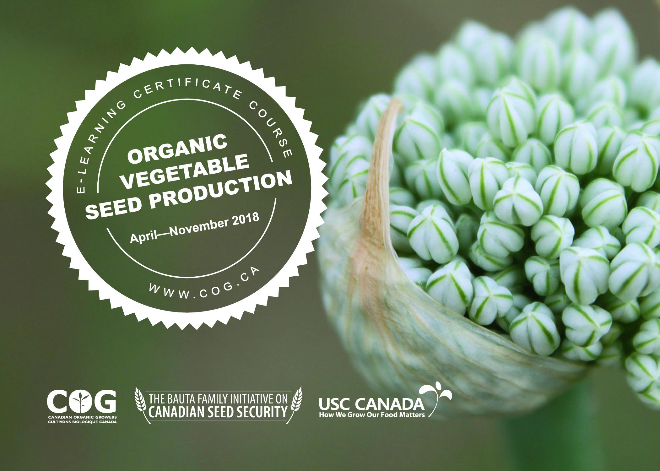 seed_production_cog.jpg