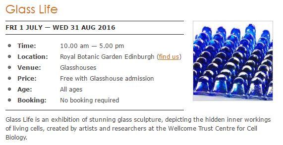 Glass_Exhibition.JPG