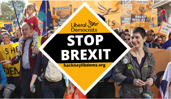 Image result for lib dems stop brexit