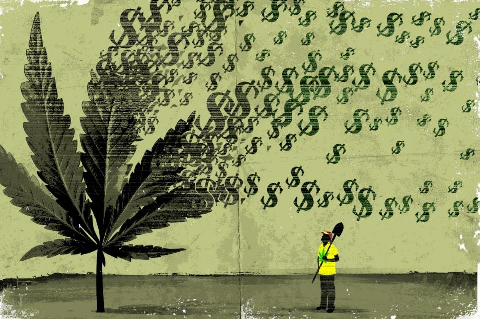 mj_money_tree.jpg