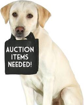 auction_dog.jpg
