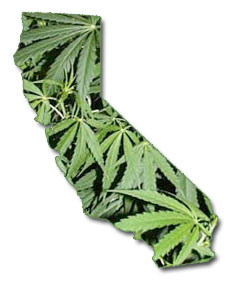 calif_map_leaves.jpeg