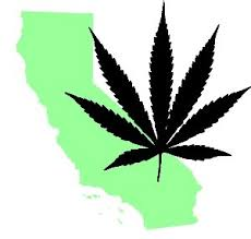 calif_mj_leaf.jpg