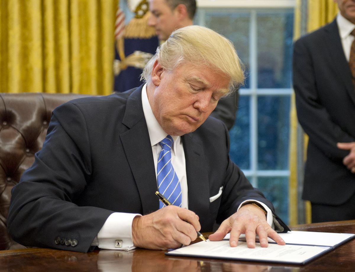 trump_signs.jpg