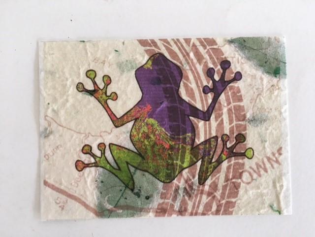 Frog by Ann Bartholomeauz