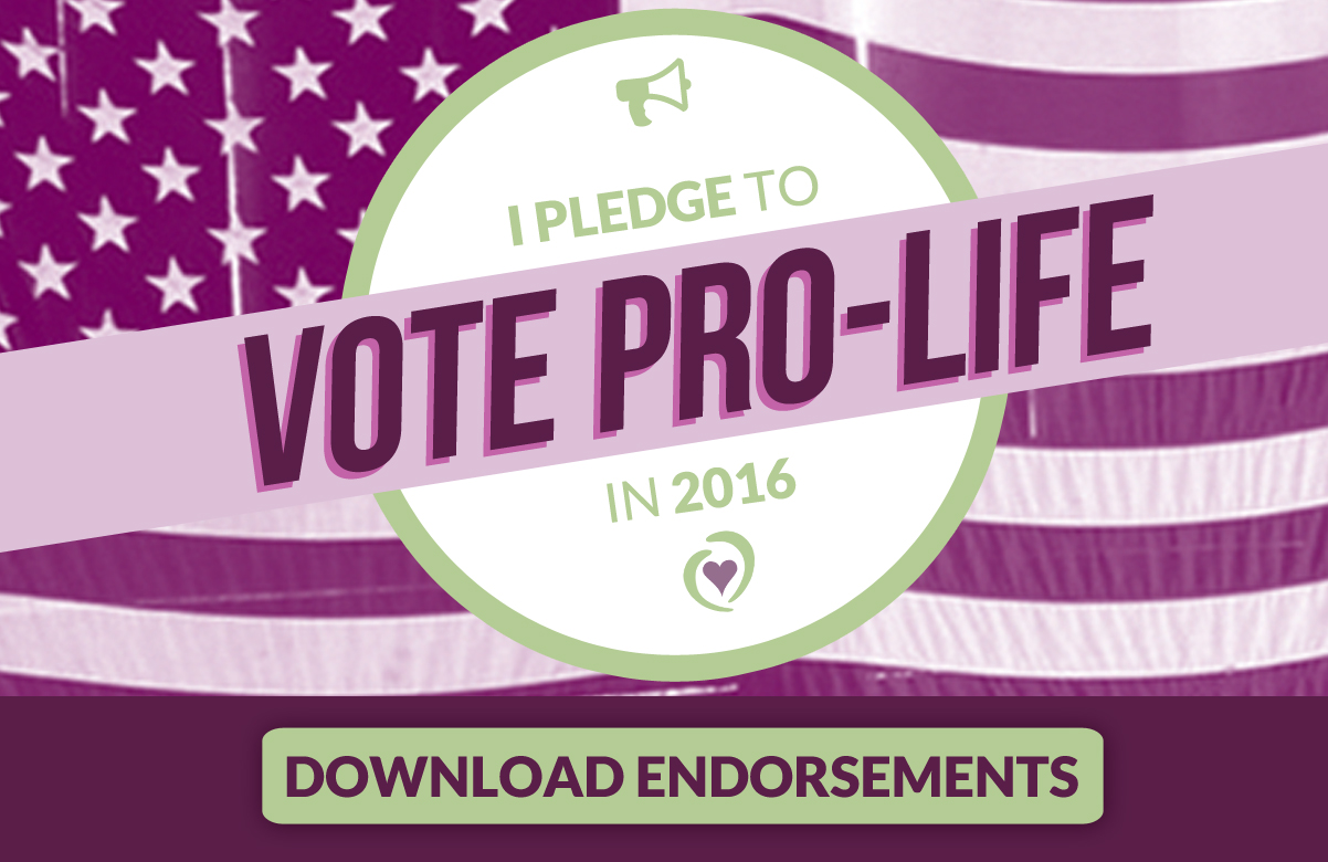 10-12-16_Pledge_to_Vote_Pro-life.jpg