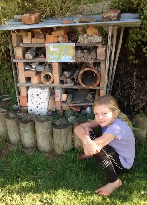 Ngatimoti School student with bug hotel