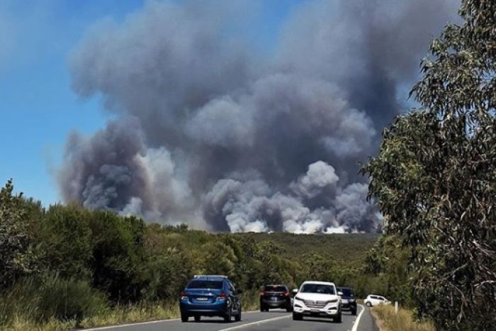 Cuts to national parks raising bushfire risk