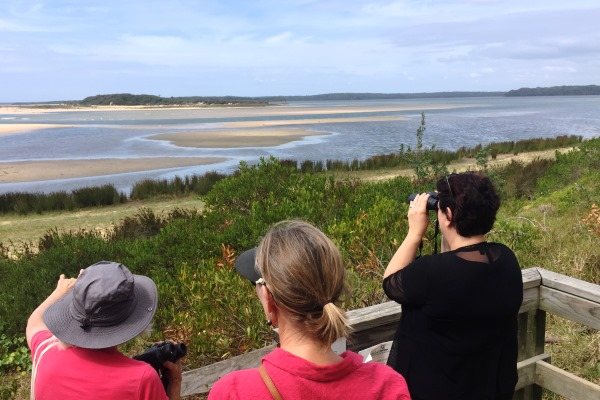 World Wetlands Day a reminder of the importance of wetlands – and how NSW is falling behind