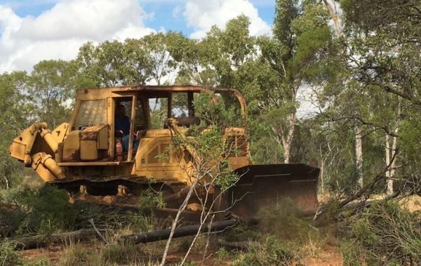 """Release the bulldozers"": Berejiklian continues war on the environment"