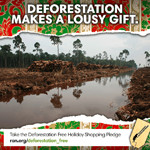Take the Deforestation Free Shopping Pledge