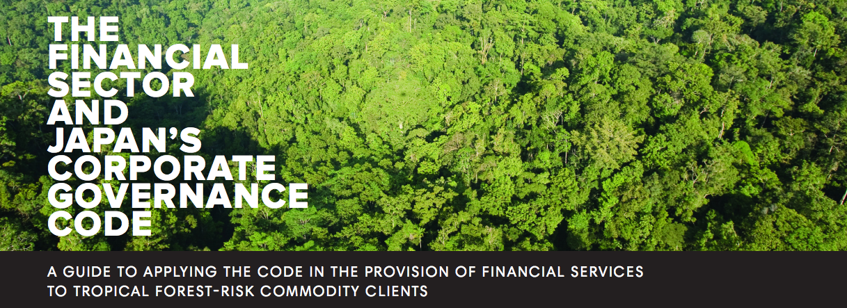 The Financial Sector and Japan's Corporate Governance Code