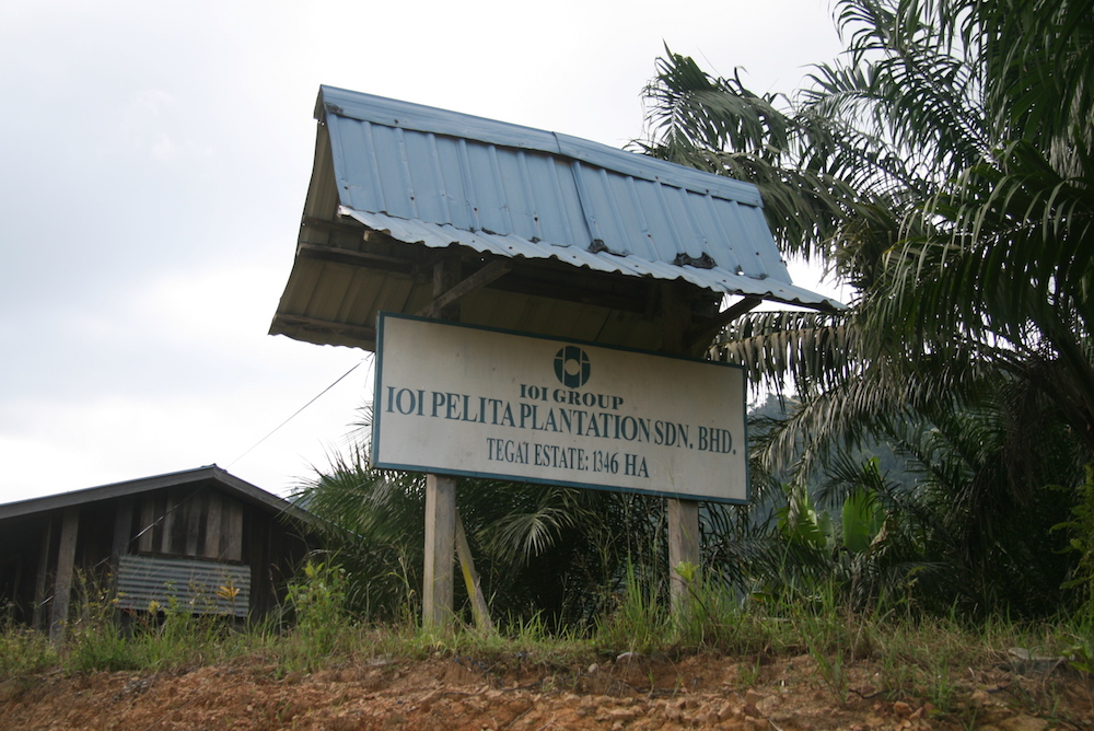 NGO's Tell Brands: Drop Palm Oil Giant IOI Group!
