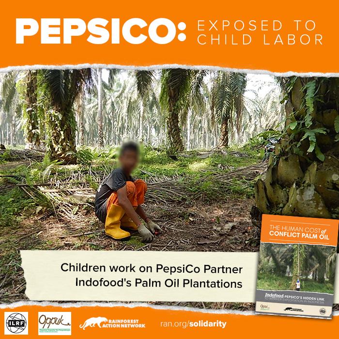 PepsiCo: Hentikan eksploitasi dalam produksi makanan ringan!