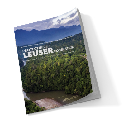Protecting the Leuser Ecosystem