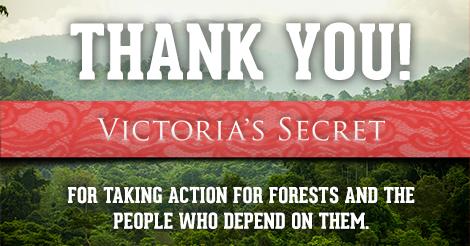 Victoria's Secret commits to rainforest-free fabrics