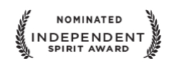 spirit_nominated.jpg
