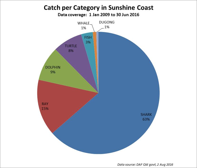 Pie Graph of shark net catch