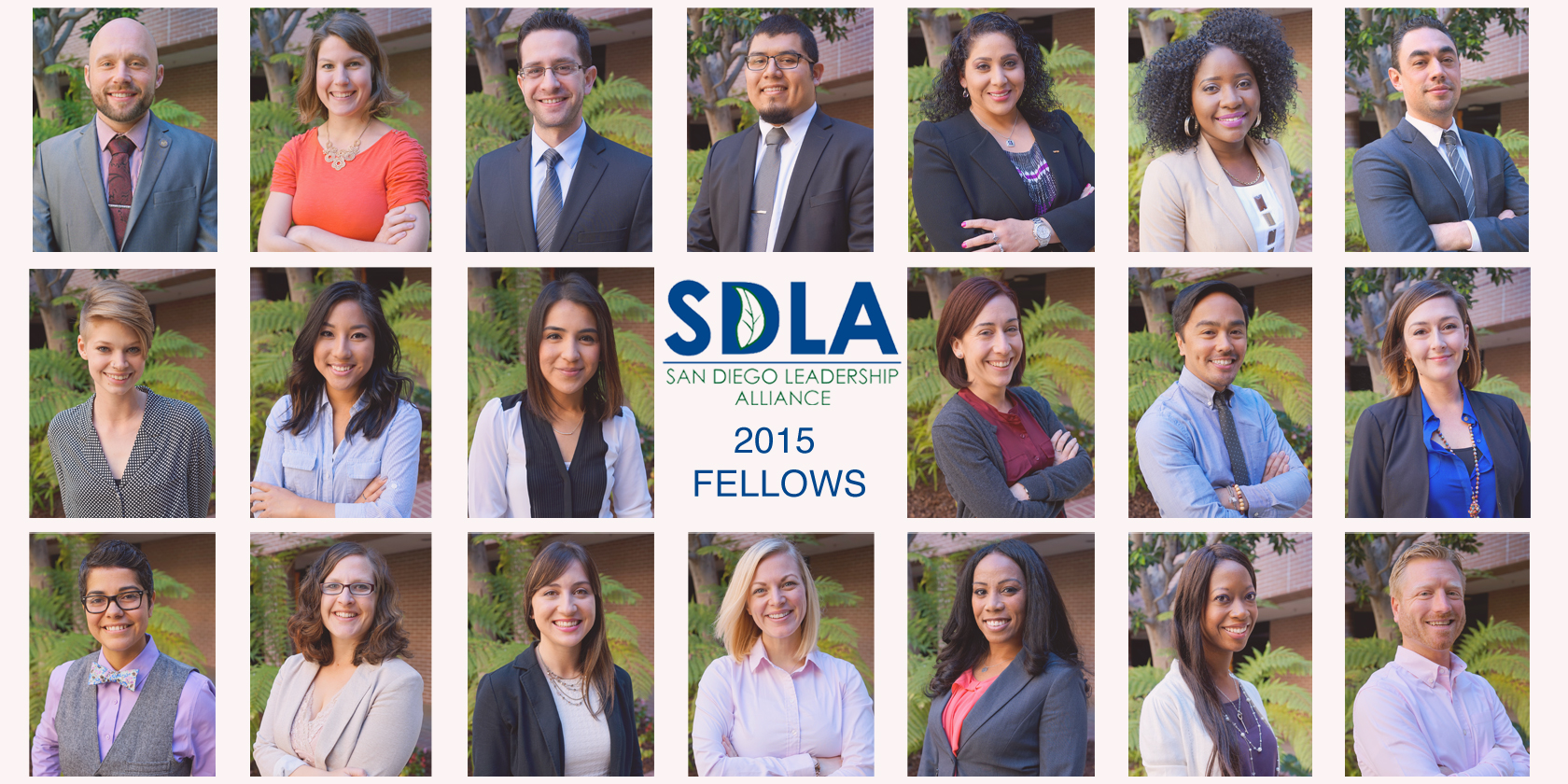 2015 SDLA Fellows
