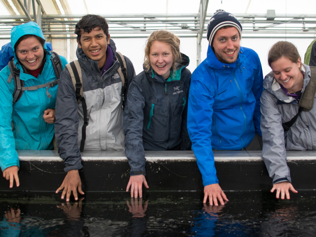 Photo for Why do salmon jump? Exploring the Medvejie Hatchery in Southeast Alaska