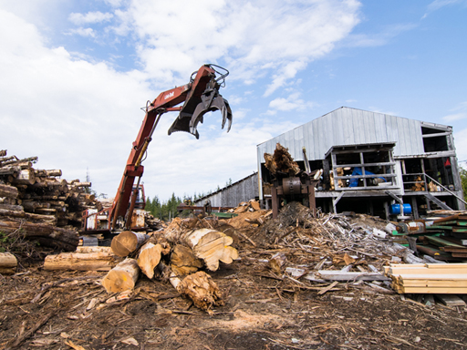 Sitka Conservation Photo: Investigating a Responsible Timber Industry on the Tongass: A Conservationist's Perspective (1 of 6 part series)