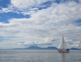 Photo for Voices of the Tongass - Whale Watching