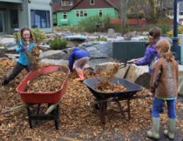 Latest Sitka Conservation Society blog post image.