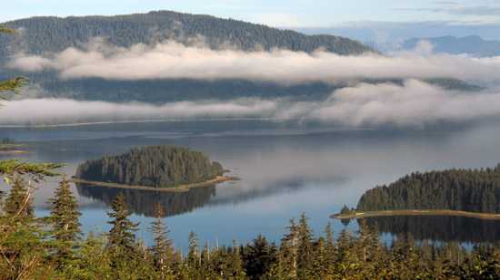 Photo for Sealaska Bill Privatizes 70,000 Acres of the Tongass