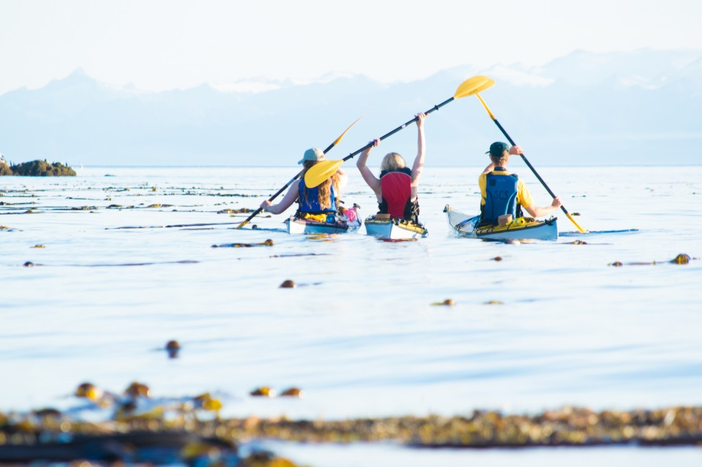 Kayaking Kootznoowoo: Report on SCS's Final Wilderness Trip - Sitka Conservation Society