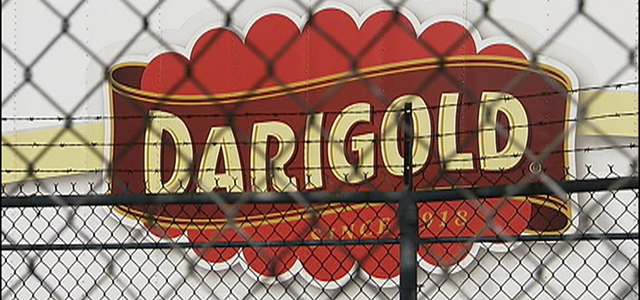 Strike Threat Grows at Darigold's Milk Processing Plants Image