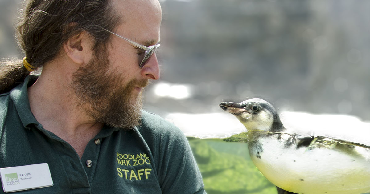 Zoo secrets: How zookeepers' rights and wages keep the animals safe and happy Image