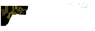 Junglistan Logo