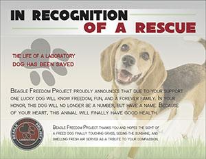 Sponsor A Rescue!