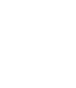 Wilson Montessori PTO
